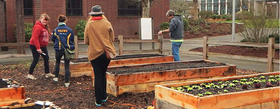 Richard Kelley Learning & Healing Garden